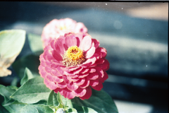 Anchorage-Homer-1987-009