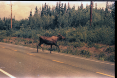 Anchorage-Homer-1987-032