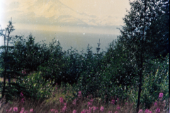 Anchorage-Homer-1987-036