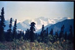 Denali-Valdez-87-028