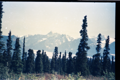Denali-Valdez-87-029