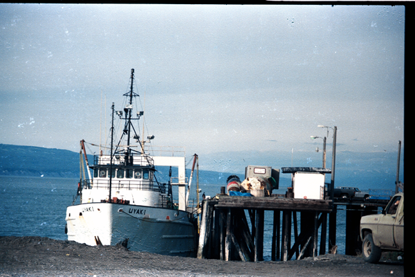 Homer-Portage-87-013