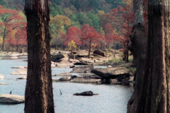 Beavers-Bend-1-10-28-92-002