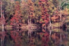 Beavers-Bend-1-10-28-92-007