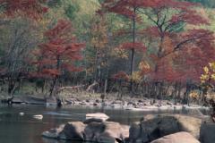 Beavers-Bend-1-10-28-92-087