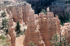 Bryce-Canyon-96-272