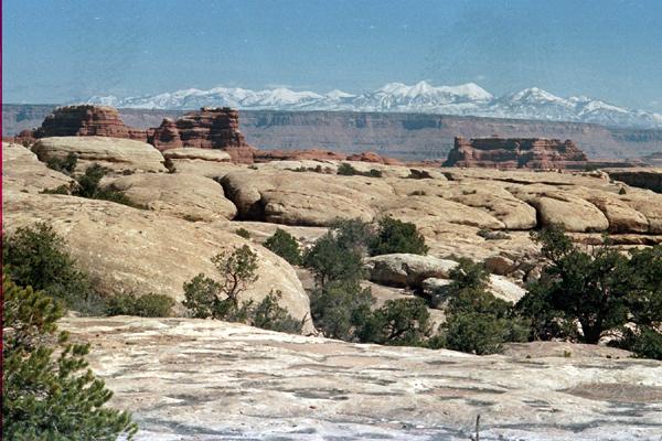 Canyonlands-86-1-241