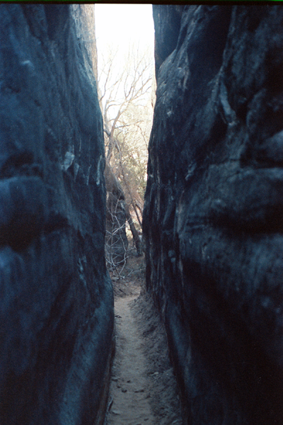 Canyonlands-86-1-249