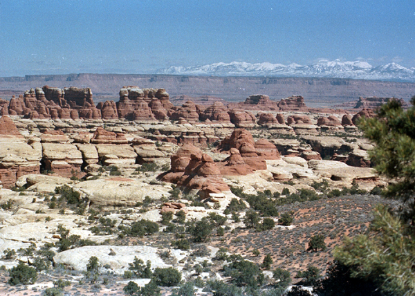 Canyonlands-86-1-261