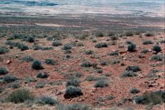 Canyonlands-85-1-315