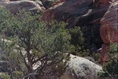 Canyonlands-86-2-011