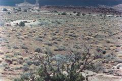 Canyonlands-86-2-065