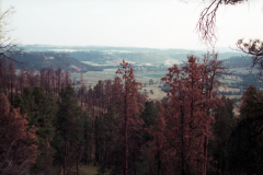 Devils-Tower-2000-008