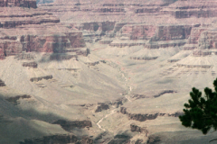 Bryce-To-Grand-Canyon-7-96-28