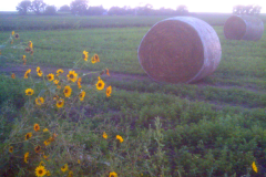 OTR-2013-Iowa-054