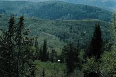 Camping-w-Tim-Ernie-5-85-012