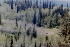 Camping-w-Tim-Ernie-5-85-042