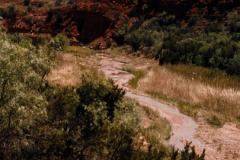 Palo-Duro-5-27-91-019