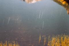 RMNP-13-2004-024