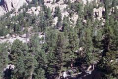 RMNP-2-2004-001
