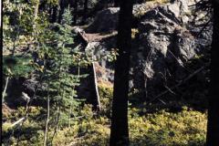 Rocky-Mountain-Hike-91-024