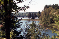 Vacation-2000-Lake-Superior-Trees-001