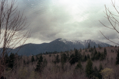 Oroville-Quilcene-3-79-014