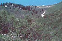 Wellsville-Hike-7-79-011