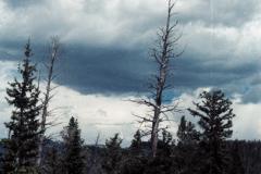 Wind-River-96-035