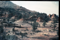 Lake-Powell-Zion-12-89-017